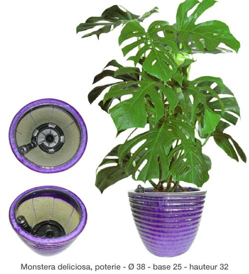 réserve d'eau pour pots, plantes et fleurs | stocwoter